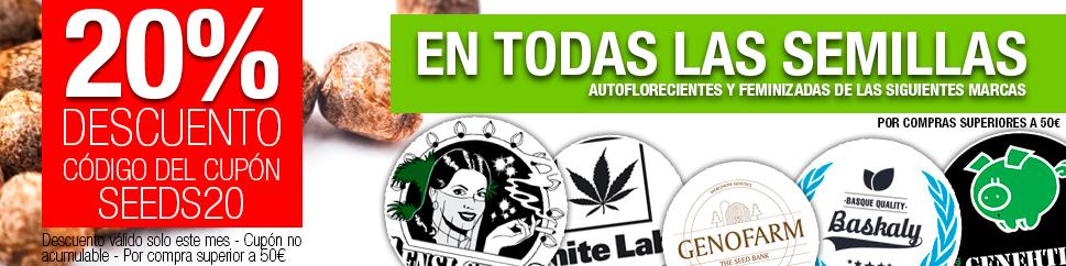 20dto en todas las semillas de marihuana