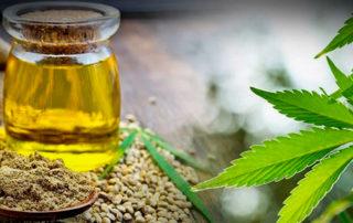 10 propiedades medicinales del aceite de CBD