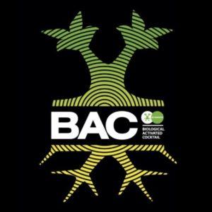 BAC online
